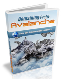 Domain Profits Avalanche