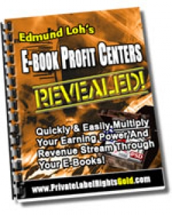 E-Book Profit Centers Revealed