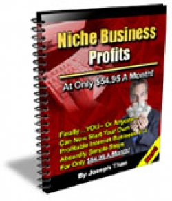 Niche Business Profits