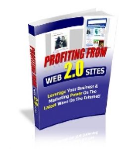 Profiting From Web 2.0 Sites