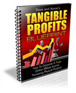 Tangible Profits Blueprint